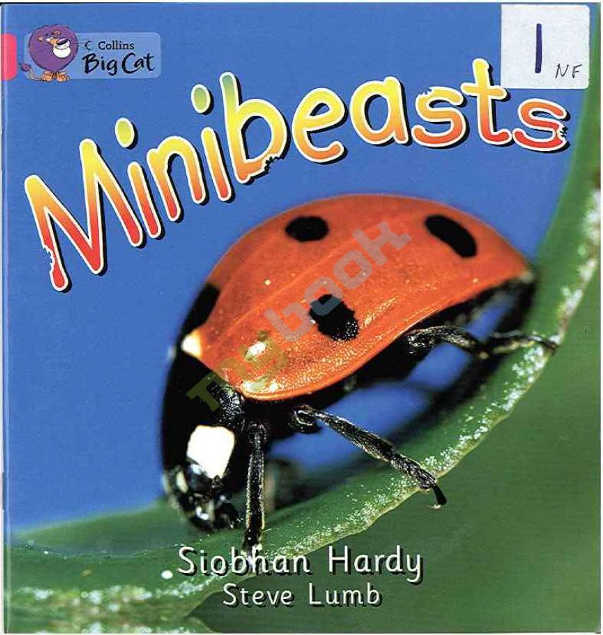 придбати книгу Big Cat 1A Minibeasts.
