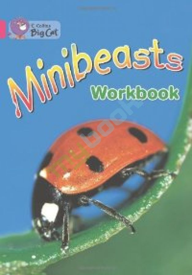 придбати книгу Big Cat 1A Minibeasts. Workbook.