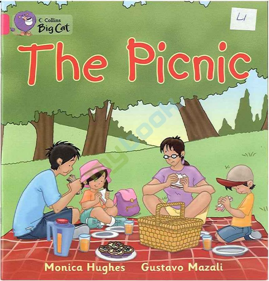придбати книгу Big Cat 1A The Picnic.