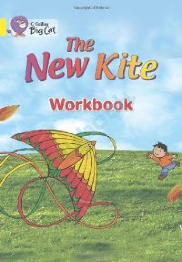 придбати книгу Big Cat 3 The New Kite. Workbook.