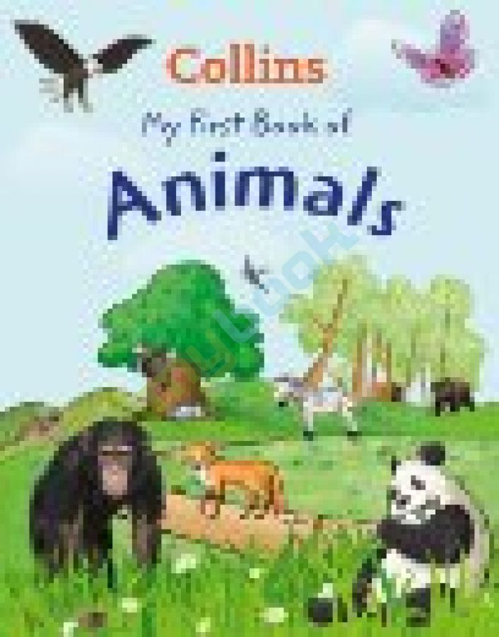 придбати книгу My First Book of Animals