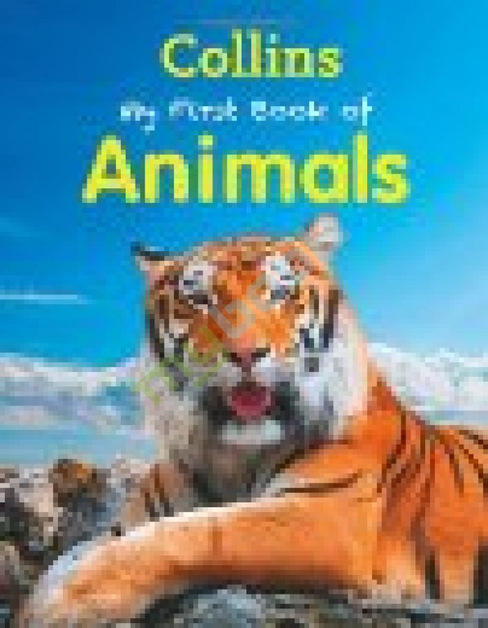 придбати книгу My First Book of Animals New Edition