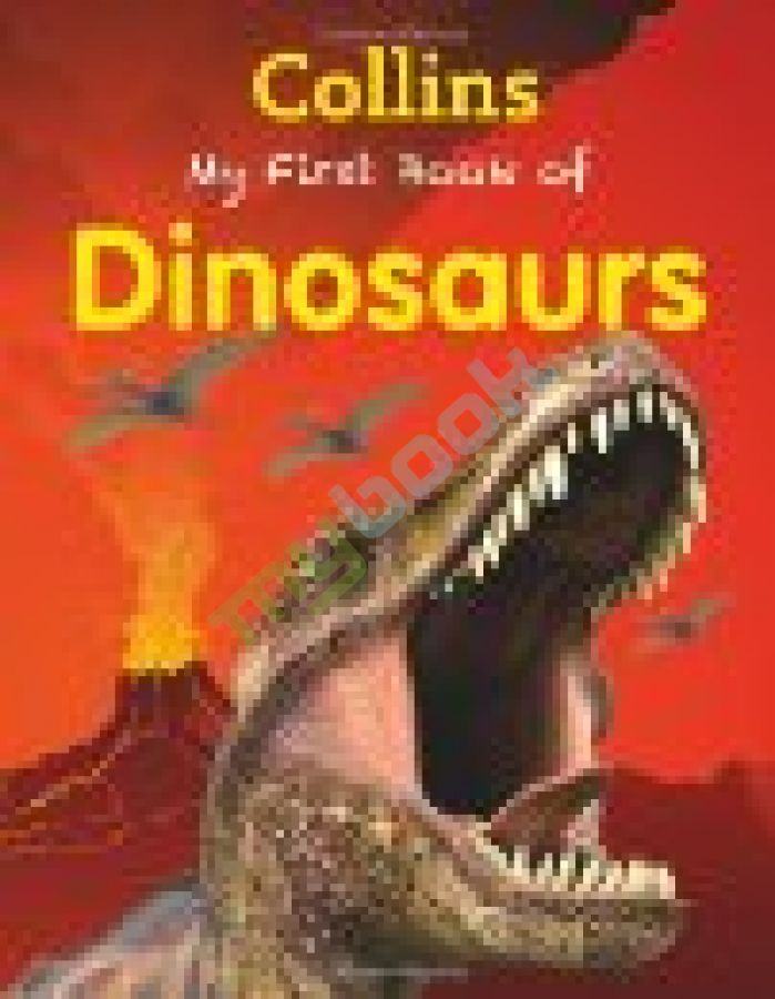 купить книгу My First Book of Dinosaurs
