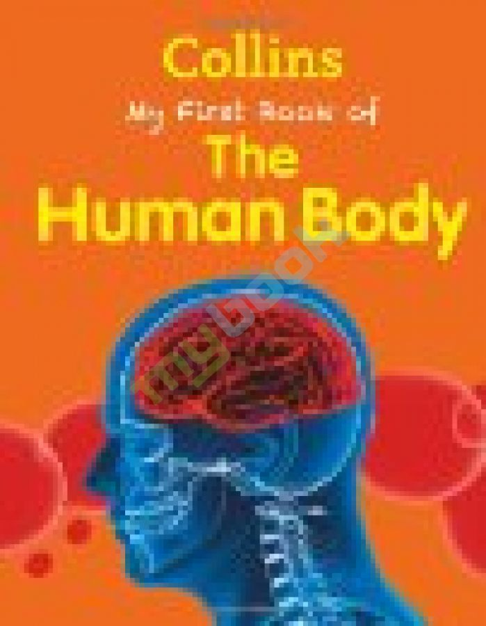 придбати книгу My First Book of the Human Body New Edition